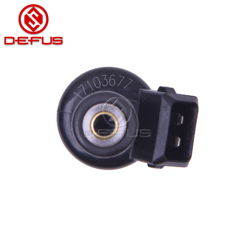DEFUS-Professional Top Automobile Fuel Injectors Supplier-1
