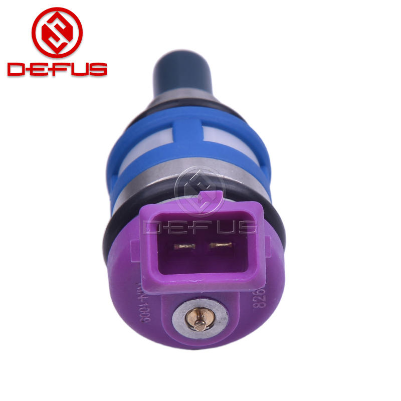 OEM RIN-1009 Fuel Injector Nozzle For Auto Spare Parts